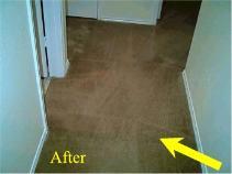 Carpet Seam Repair Seam Carpet Free Real Time Quote